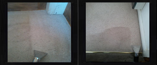 Carpet cleaning using Deepa cleaning method